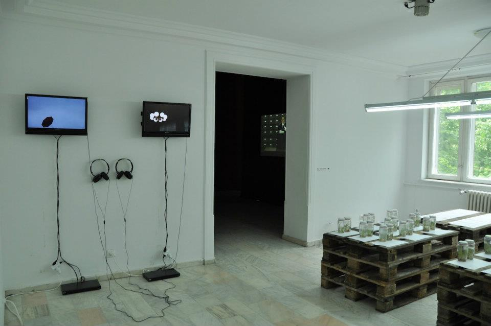BB4 installation view.